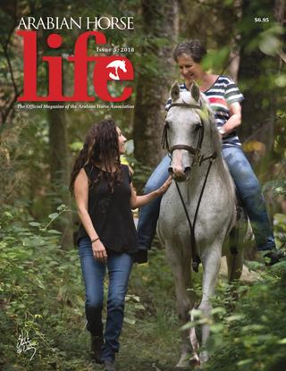 Determined Women of an Age Stay in the Saddle